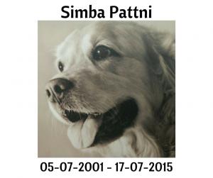 Simba Pattni