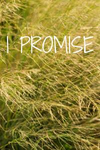 I PROMISE (1)